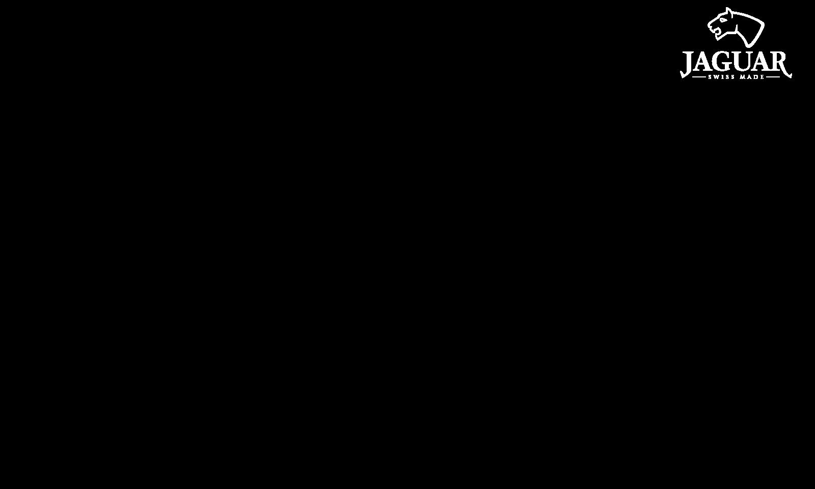 https://termekek.festina.hu/sites/default/files/revslider/image/jaguar_logo.png